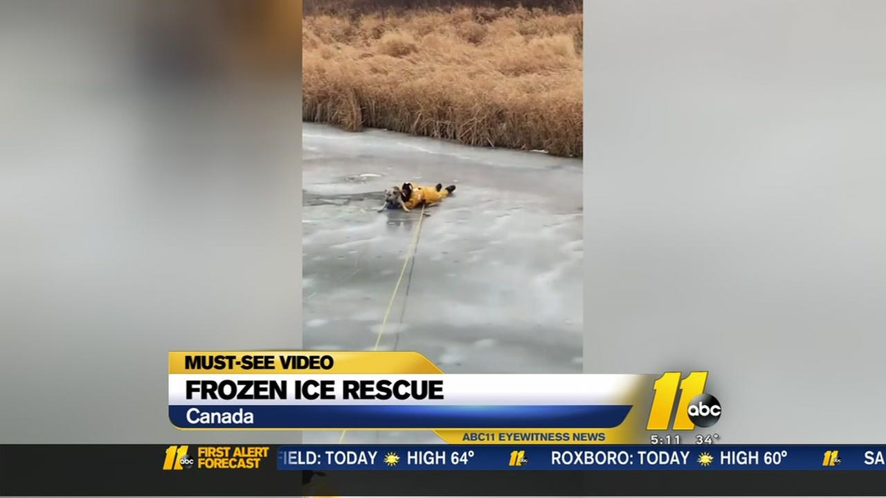 Dog on thin ice rescued by firefighters