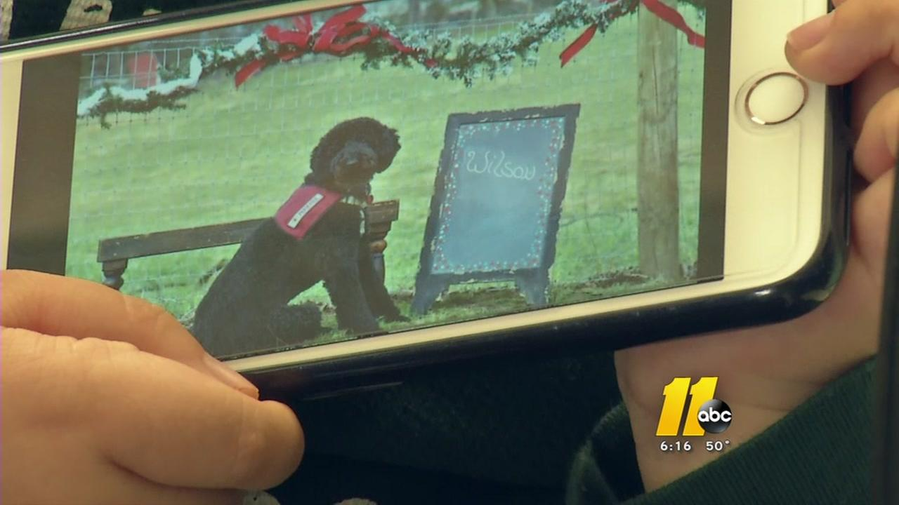 Cary boy needs help fundraising for service dog