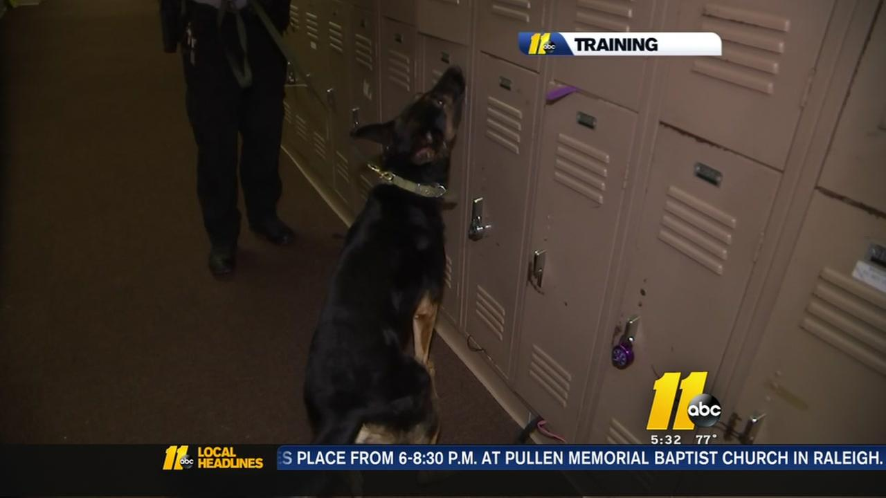 Cumberland dogs sniff out guns