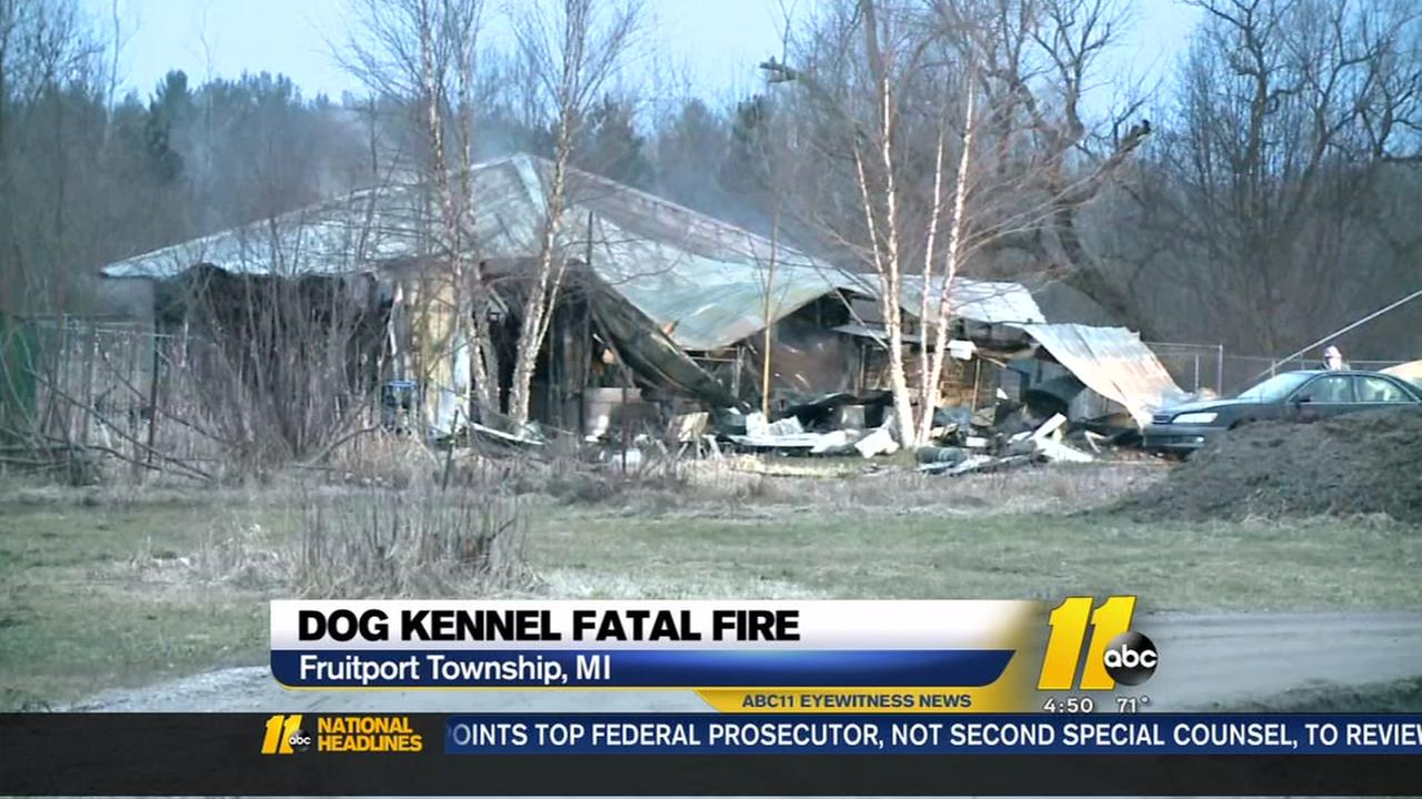 About 30 dogs dead in Michigan kennel fire
