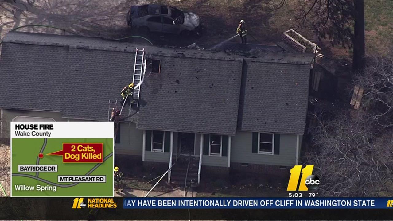 Three pets perish in house fire