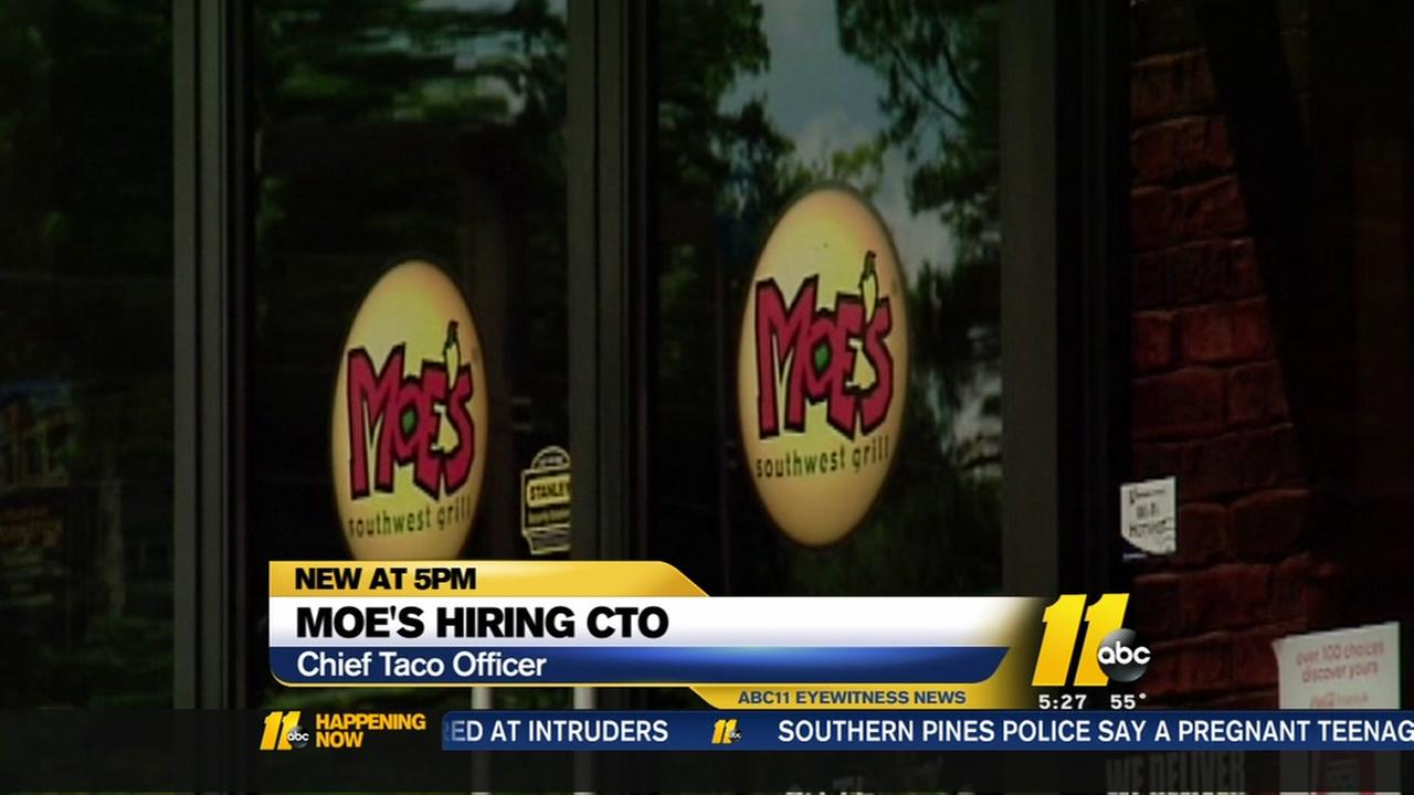 Moes hiring a Chief Taco Officer