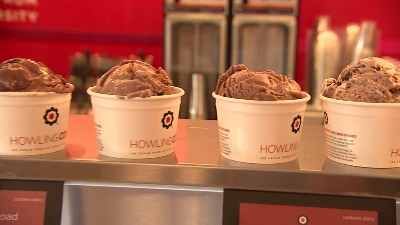 Chocolate Ice Cream Day