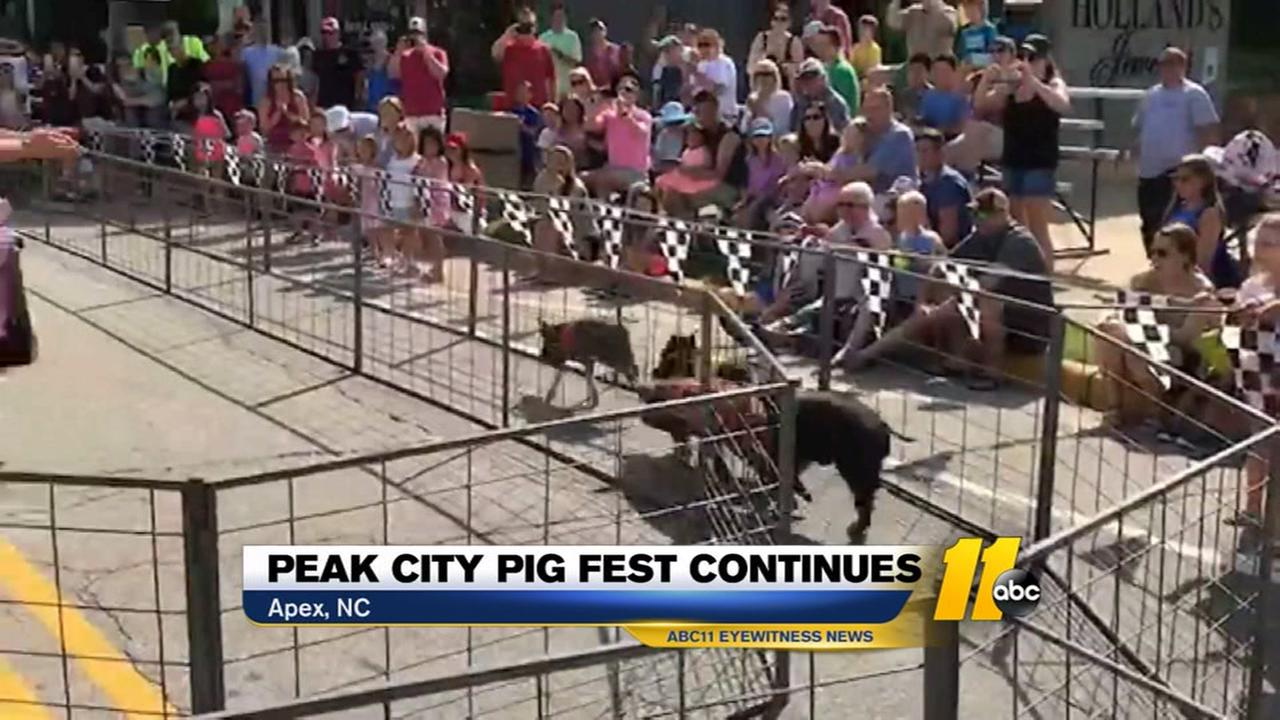 Peak City Pig Fest continues