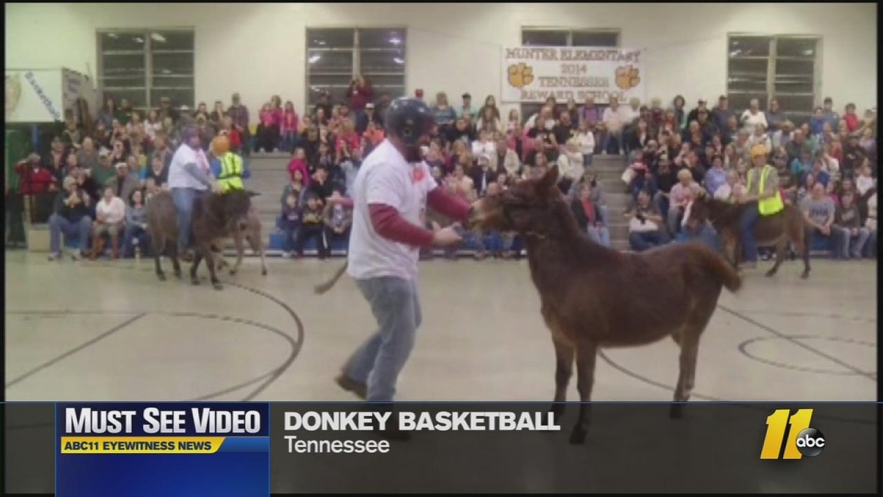 Must-See Videos: Donkey basketball for a great cause
