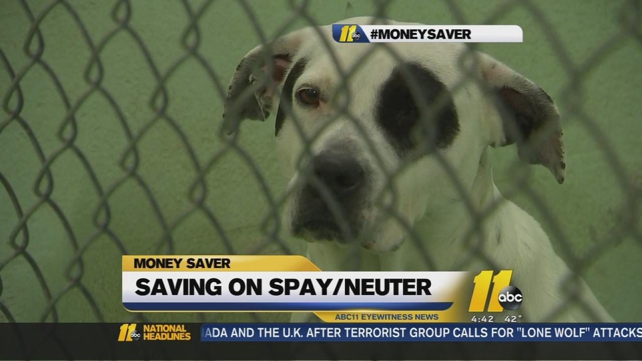 Durham residents can get a $10 spay/neuter voucher