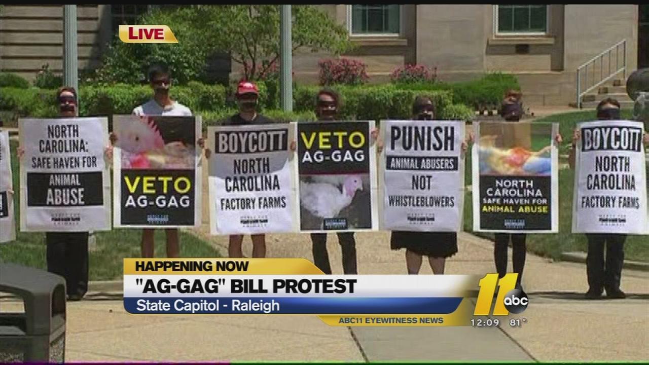 Protestors call on McCrory to veto Ag-Gag bill