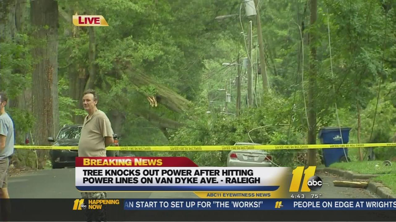 Tree knocks out power in Raleigh