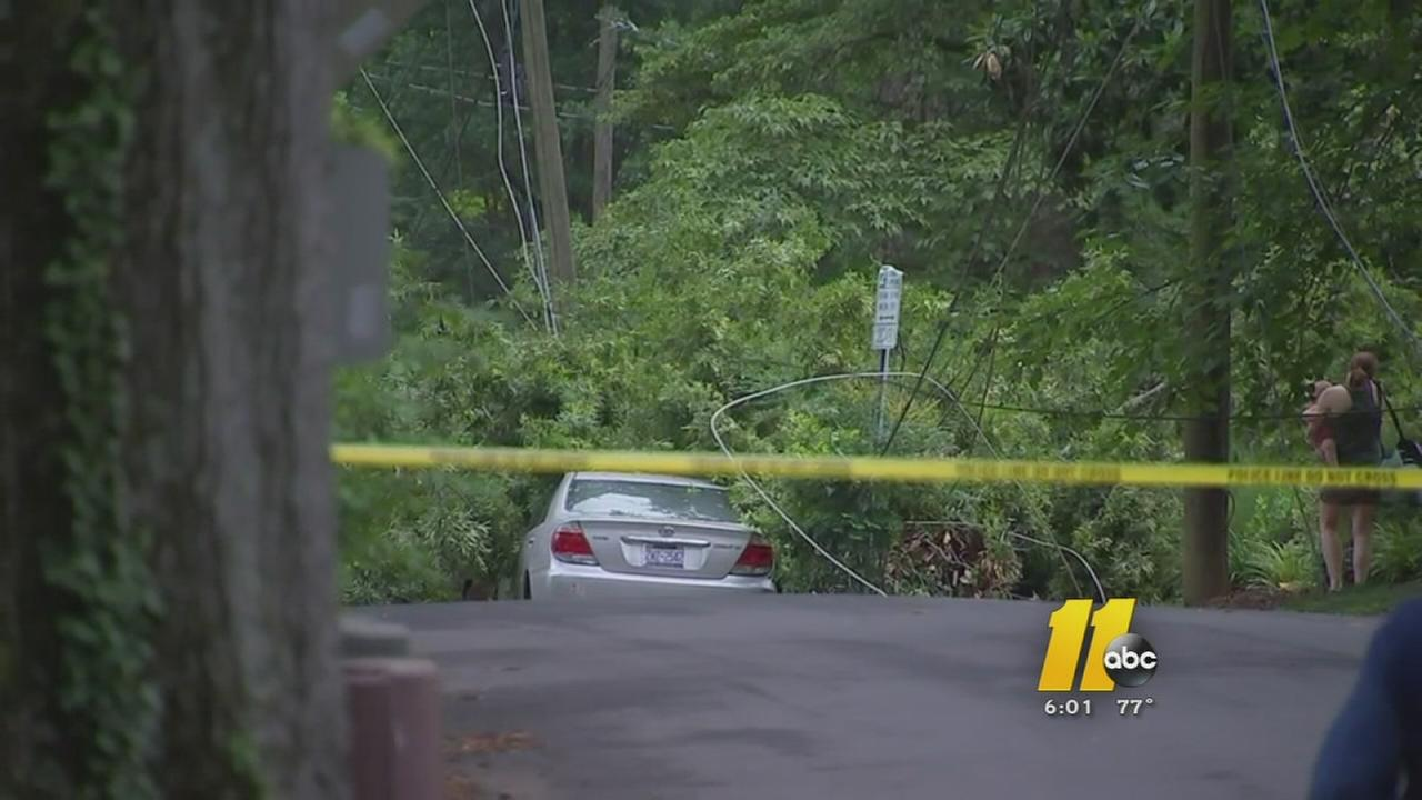 Fallen tree knocks out power, blocks traffic in Raleigh