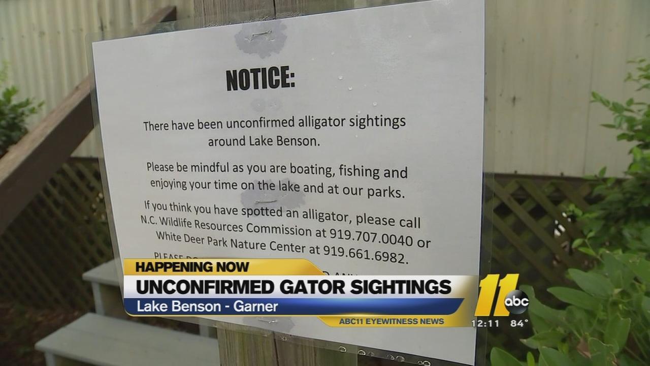 Unconfirmed gator sighting at Lake Benson