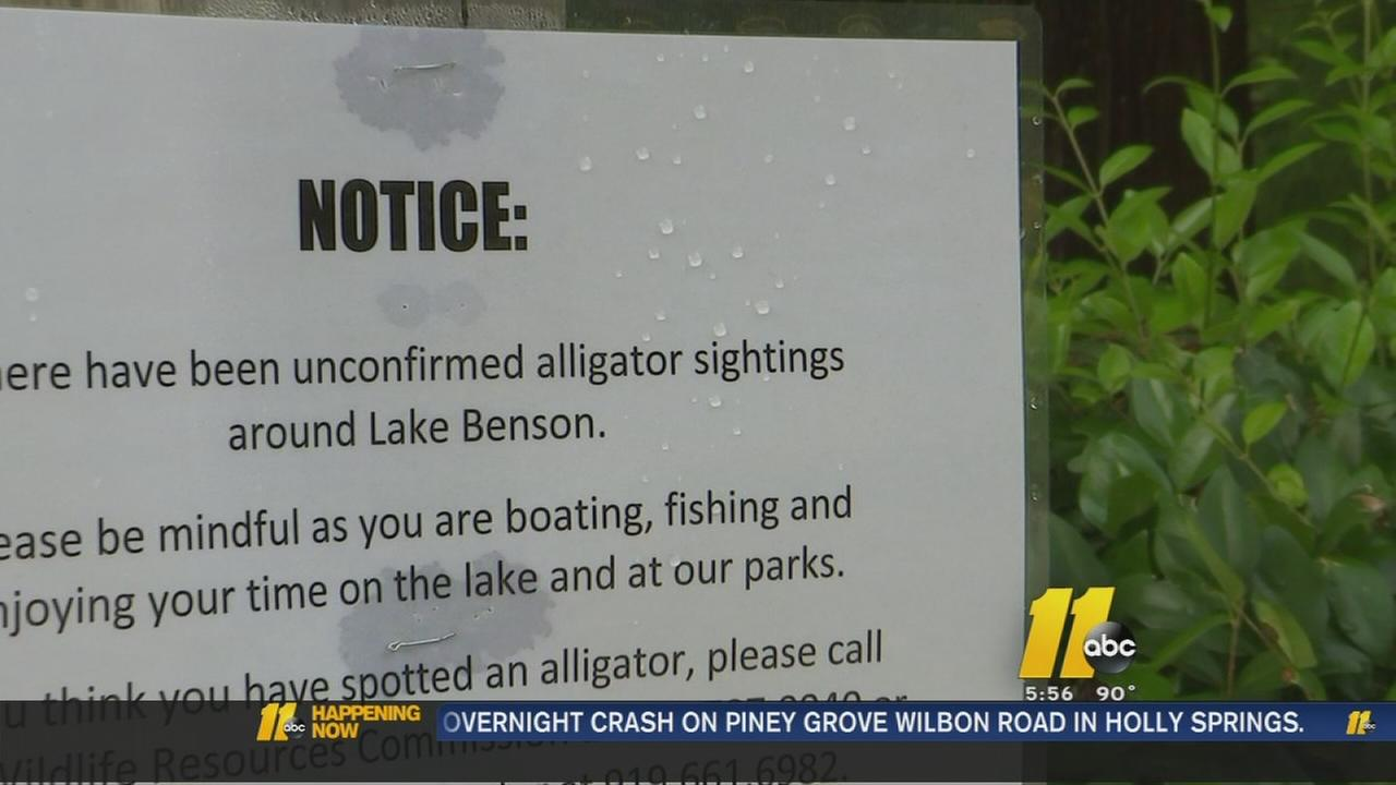 Possible alligator sighting in Garner