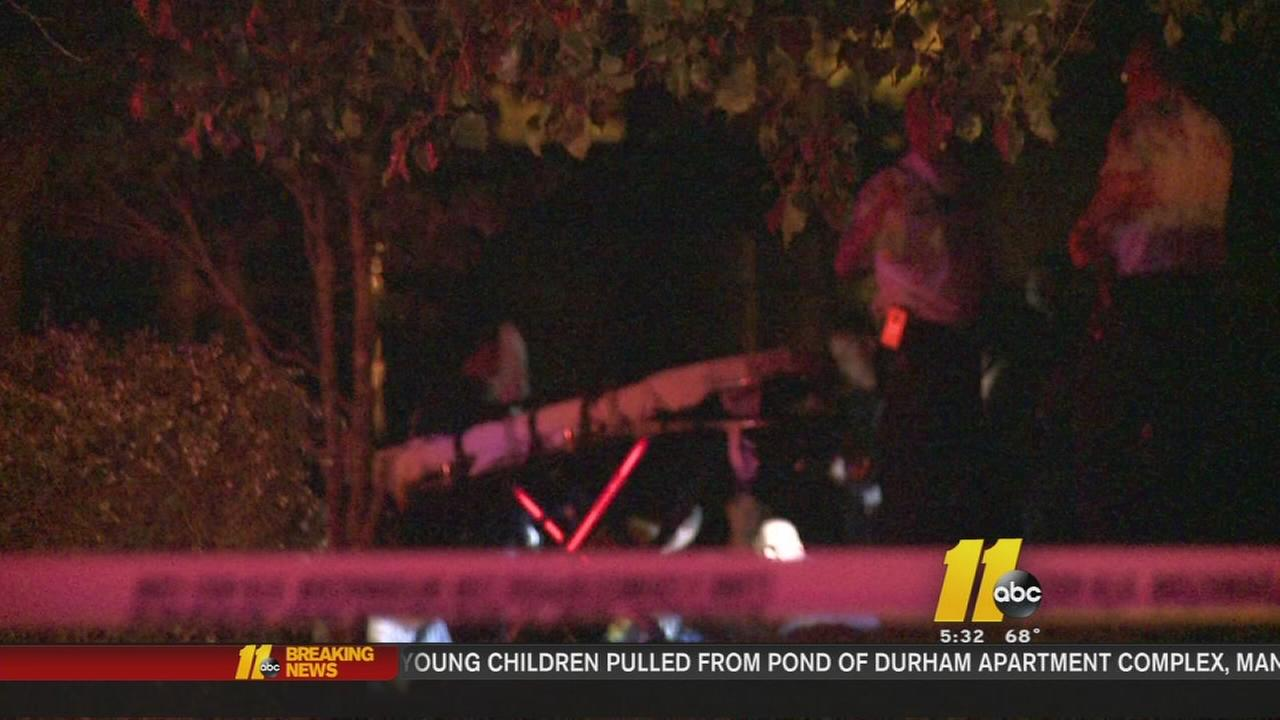 Durham police pull two children from pond