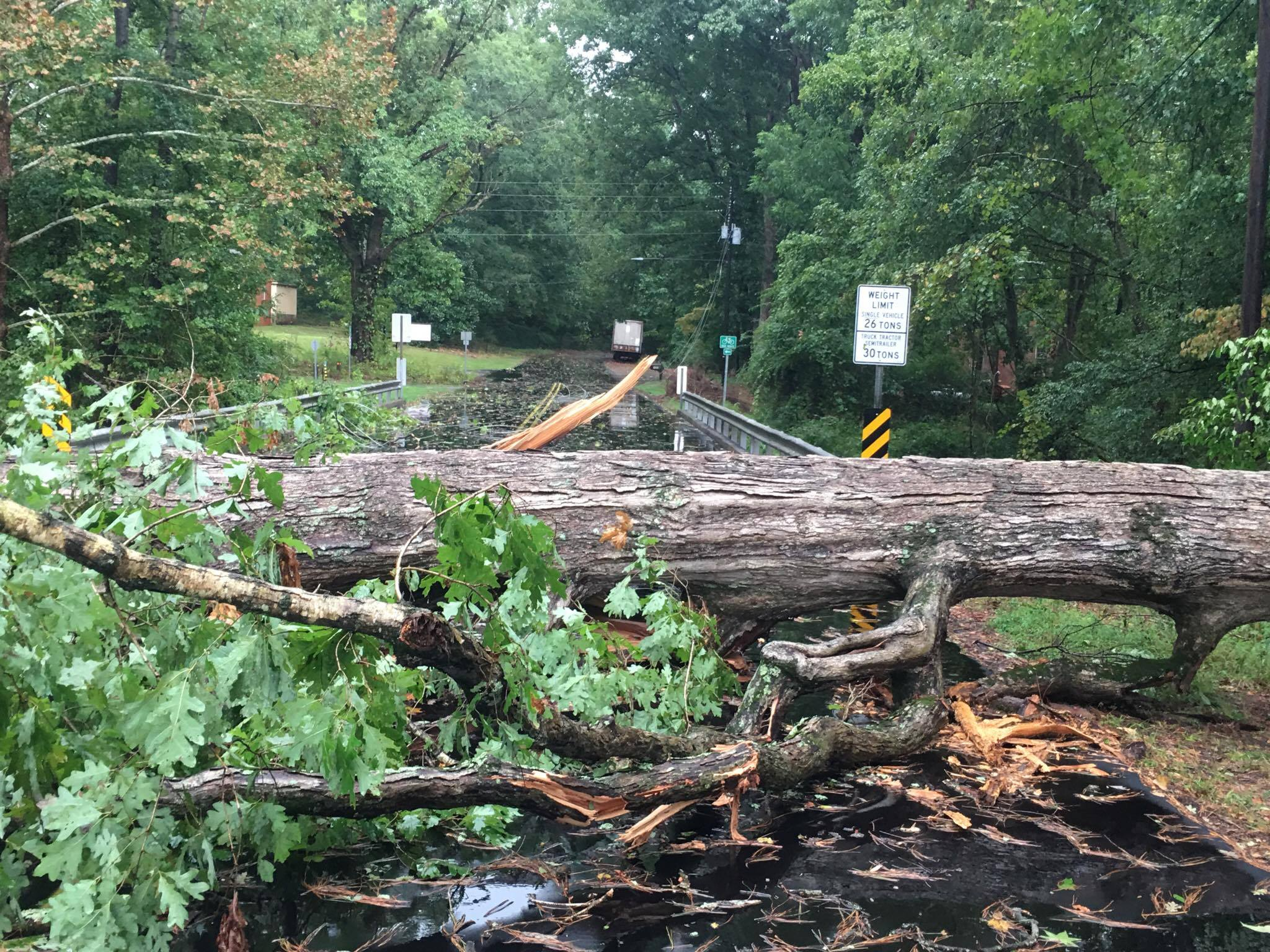 "<div class=""meta image-caption""><div class=""origin-logo origin-image wtvd""><span>WTVD</span></div><span class=""caption-text"">A huge tree blocks the roadway in Sanford. (Kimberly Nation)</span></div>"