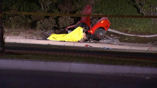 Driver killed in Ferrari accident