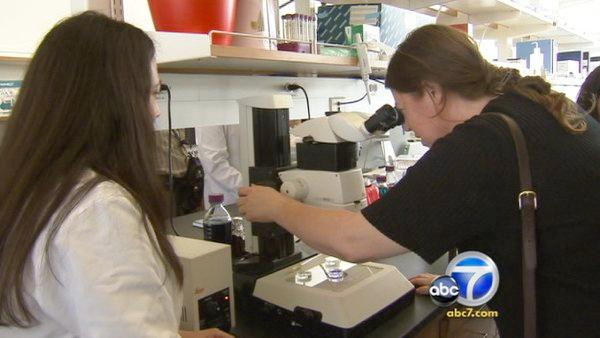 $80 billion stem cell research center opens