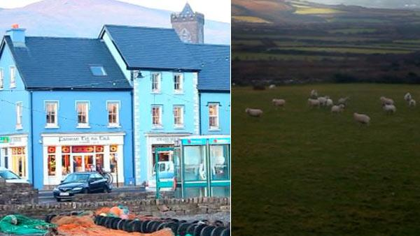 Dingle is a town of 1,900 people and 500,000 sheep. But Fungi has been the star attraction for more than 25 years.
