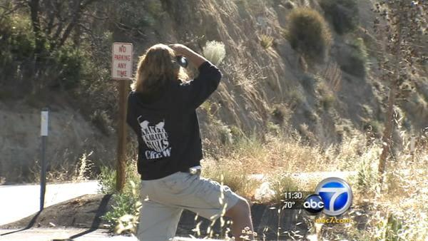 Fire danger raised in two SoCal forest areas