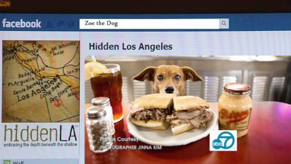Dig for treasures with Hidden LA