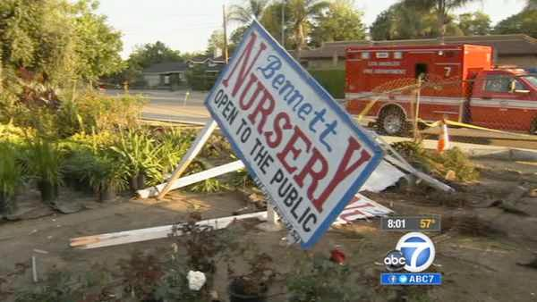 Purse theft leads to crash in North Hills