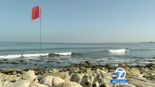 Japan tsunami debris watch begins in SoCal