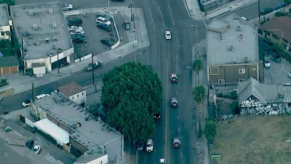 A robbery suspect led LAPD officers in a pursuit in and around the downtown Los Angeles area Tuesday, Sep
