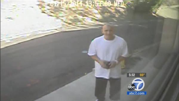 Hollywood Hills burglary suspect seen on cam