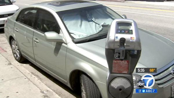 Mayor, council push parking fines increase