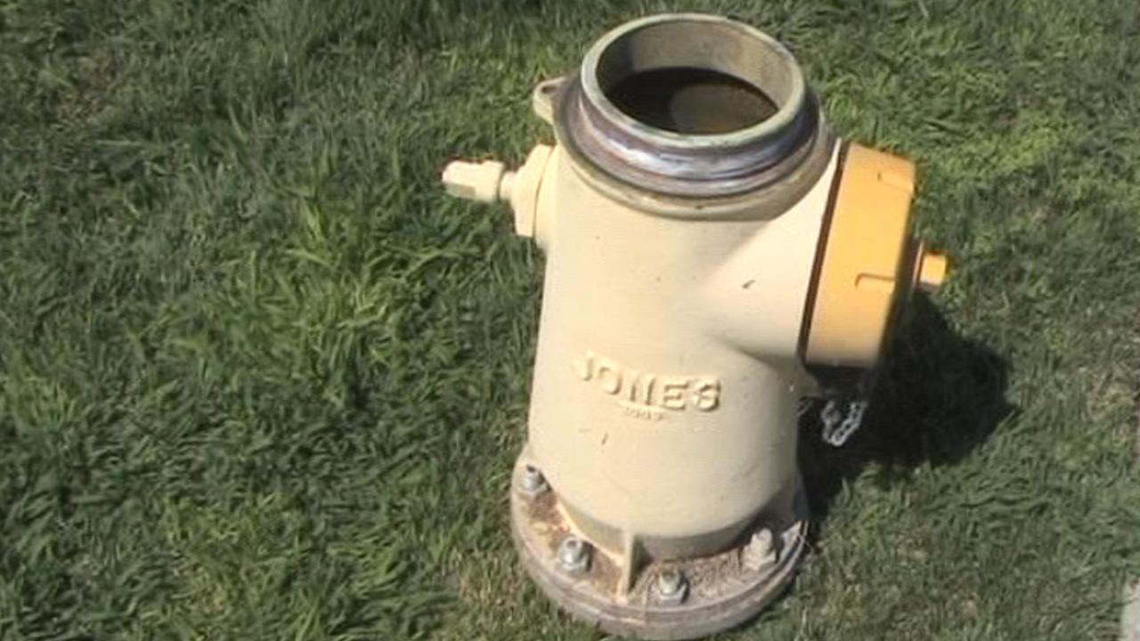 A fire hydrant is seen in this undated file photo.