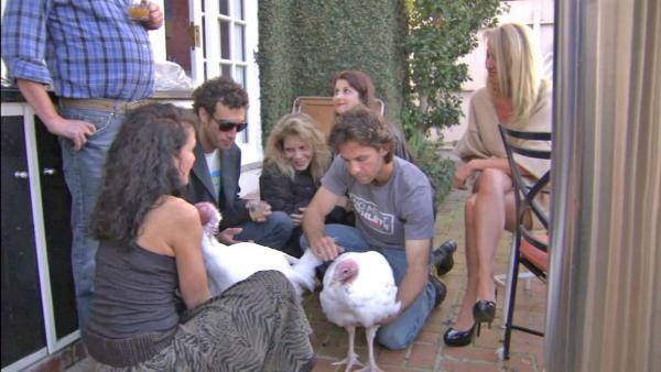 Turkeys are guests at Palisades Thanksgiving