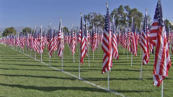 Over 2K flags fly in honor of Veterans Day