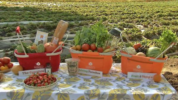 Farm Box LA delivers, recycles food