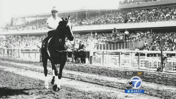 Remains of Hollywood Park racehorse exhumed