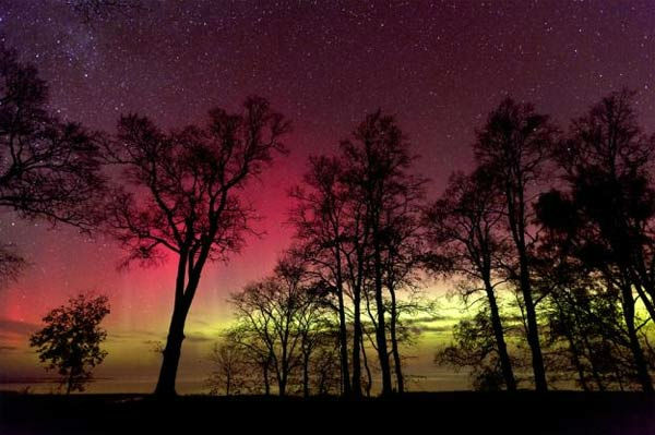 "<div class=""meta ""><span class=""caption-text "">Janis Satrovskis took this photo of the aurora borealis from Burtnieki, Latvia, on Oct. 24, 2011. (Photo/spaceweather.com/Janis Satrovskis)</span></div>"