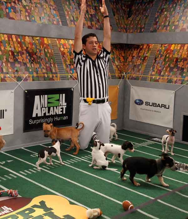 Animal Planet provided KABC-TV this image of Ref Dan Schachner calling a touch down.