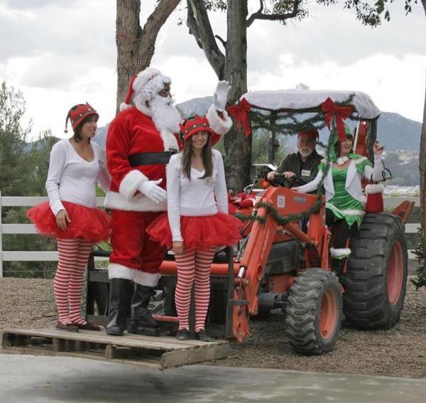 Santa arrived early at The Alpaca Hacienda. &#160;Share your holiday pictures with us on our ABC7 Facebook page. <span class=meta>(ABC7 viewer Mike Arndt)</span>