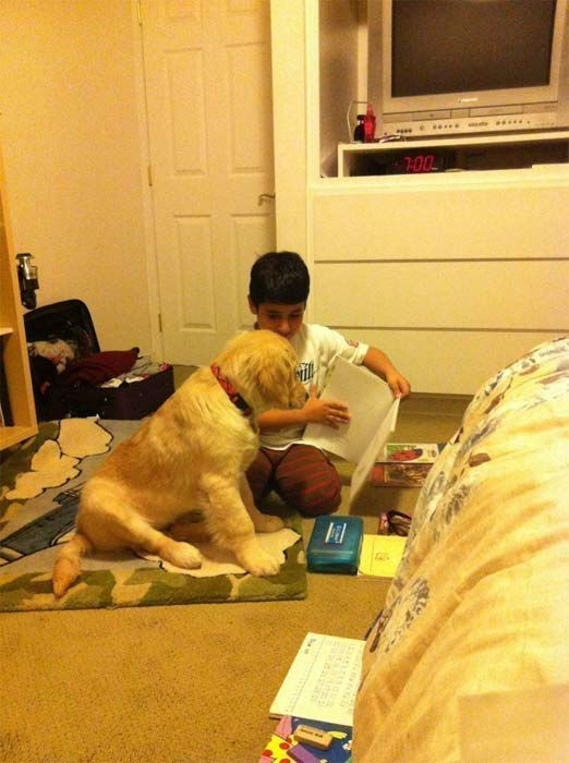 "<div class=""meta ""><span class=""caption-text "">To celebrate National Puppy Day on Friday, March 23, we asked viewers to post pictures of their pooch on our Facebook page. Here's a photo from Silva Basmadjian of her puppy Charlie Brown trying to learn how to read. (KABC Photo)</span></div>"