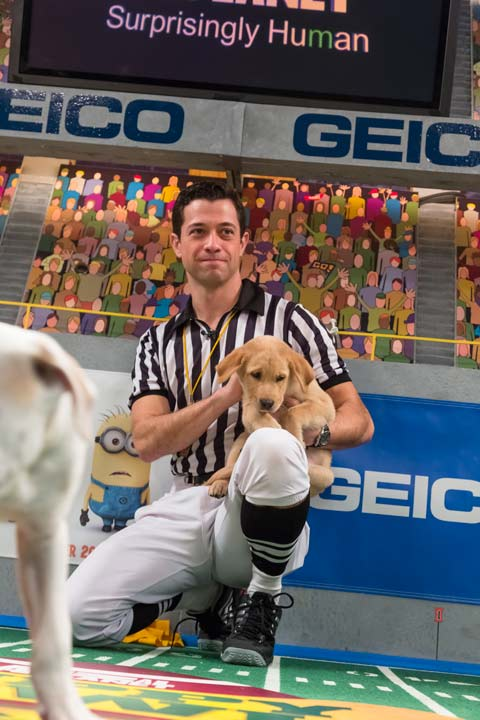 A referee talks to a dog during Animal Planet's Puppy Bowl IX, airing Sunday, Feb. 3, 2013.
