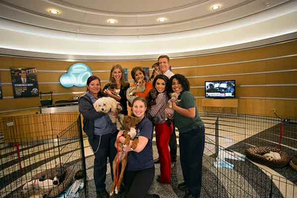 "<div class=""meta image-caption""><div class=""origin-logo origin-image ""><span></span></div><span class=""caption-text"">ABC7's Bri Winkler, Leslie Sykes, Alysha Del Valle and Phillip Palmer pose with puppies and representatives from the North Central Animal Shelter during ABC7's 'Puppypalooza' on Friday, March 21, 2014.</span></div>"