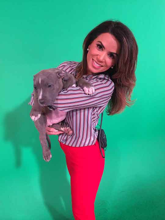 "<div class=""meta image-caption""><div class=""origin-logo origin-image ""><span></span></div><span class=""caption-text"">ABC7 Morning Show traffic reporter Alysha Del Valle smiles for the camera while holding a 2-month-old Staffordshire Bull Terrier named Cindy during ABC7's 'Puppypalooza' on Friday, March 21, 2014.</span></div>"