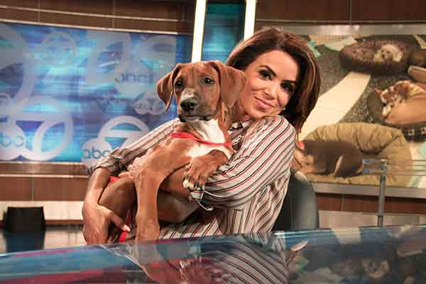 "<div class=""meta image-caption""><div class=""origin-logo origin-image ""><span></span></div><span class=""caption-text"">ABC7 Morning Show traffic reporter Alysha Del Valle holds a 4-month-old Boxer/Doberman Pinscher mix named Odin during ABC7's 'Puppypalooza' on Friday, March 21, 2014.</span></div>"