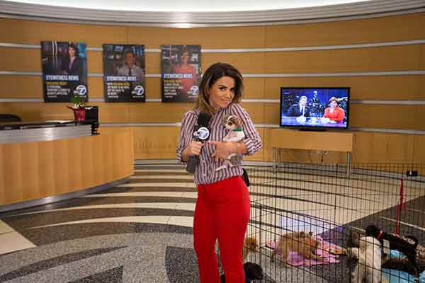 "<div class=""meta image-caption""><div class=""origin-logo origin-image ""><span></span></div><span class=""caption-text"">ABC7 Morning Show traffic reporter Alysha Del Valle holds a 2-month-old Chihuahua named Luke during ABC7's 'Puppypalooza' on Friday, March 21, 2014.</span></div>"