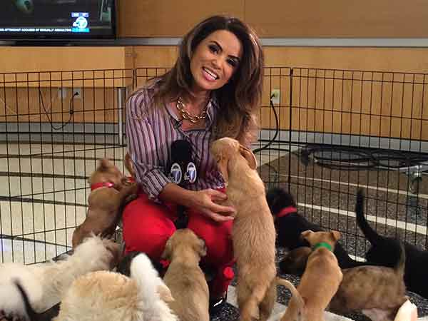 "<div class=""meta image-caption""><div class=""origin-logo origin-image ""><span></span></div><span class=""caption-text"">ABC7 Morning Show traffic reporter Alysha Del Valle smiles for the camera amongst a crowd of puppies during ABC7's 'Puppypalooza' on Friday, March 21, 2014.</span></div>"