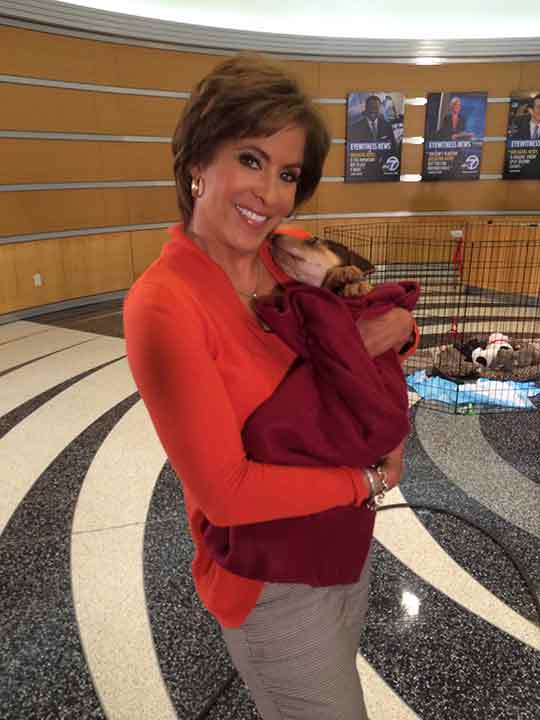 "<div class=""meta image-caption""><div class=""origin-logo origin-image ""><span></span></div><span class=""caption-text"">ABC7 Morning Show anchor Leslie Sykes smiles for the camera while holding a 3-month-old Rottweiler/German Shephard mix named Brian during ABC7's 'Puppypalooza' on Friday, March 21, 2014.</span></div>"