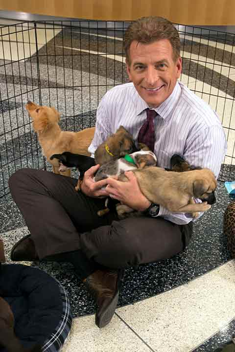 "<div class=""meta image-caption""><div class=""origin-logo origin-image ""><span></span></div><span class=""caption-text"">ABC7 Morning Show anchor Phillip Palmer fits five puppies on his lap during ABC7's 'Puppypalooza' on Friday, March 21, 2014.</span></div>"