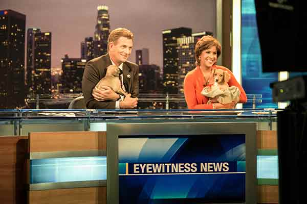 "<div class=""meta image-caption""><div class=""origin-logo origin-image ""><span></span></div><span class=""caption-text"">ABC7 Morning Show anchors Phillip Palmer and Leslie Sykes pose with puppies during ABC7's 'Puppypalooza' on Friday, March 21, 2014.</span></div>"