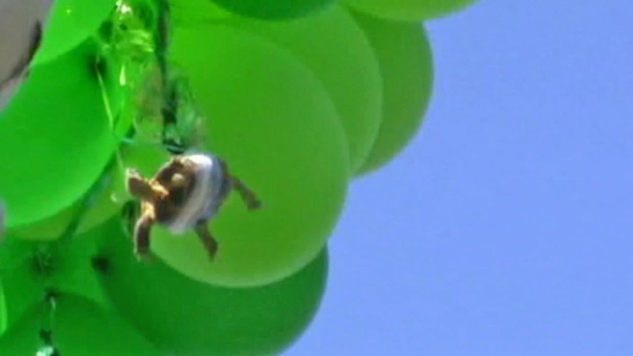 A turtle was duct-taped to a bunch of balloons and sent soaring into the sky in Oceanside, Calif.