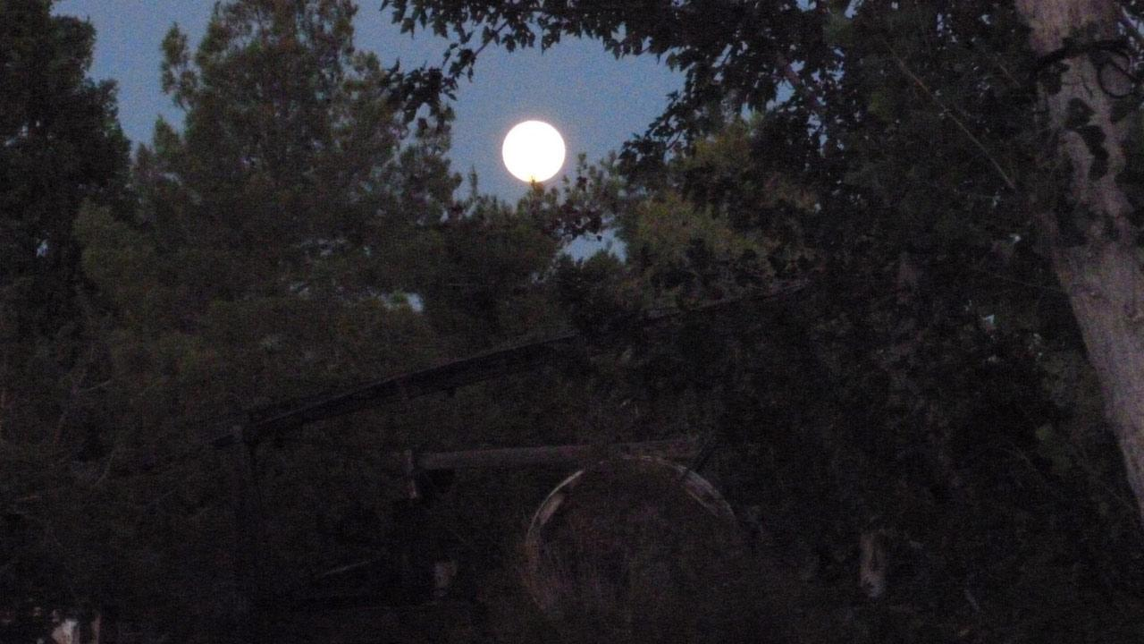 ABC7 viewer Whitney Brayton sent us this photo of the blue moon over Pinon Hills, Calif.ABC7 viewer Whitney Brayton