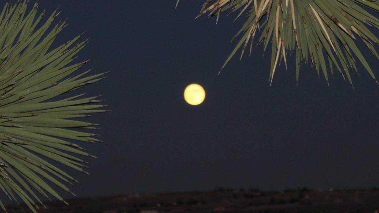 ABC7 viewer Judy Ritner sent us this photo of the blue moon in Apple Valley.ABC7 viewer Judy Ritner