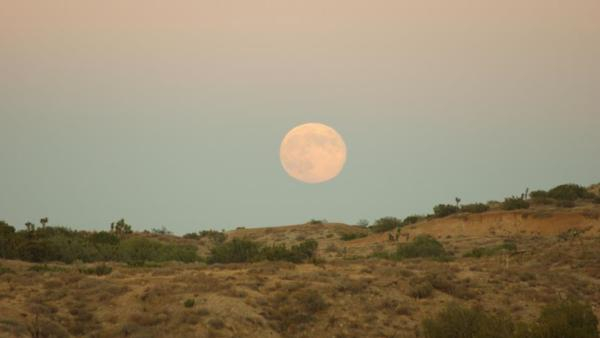 ABC7 viewer Steve Rouse sent us this photo of the blue moon in the western Mojave Desert.
