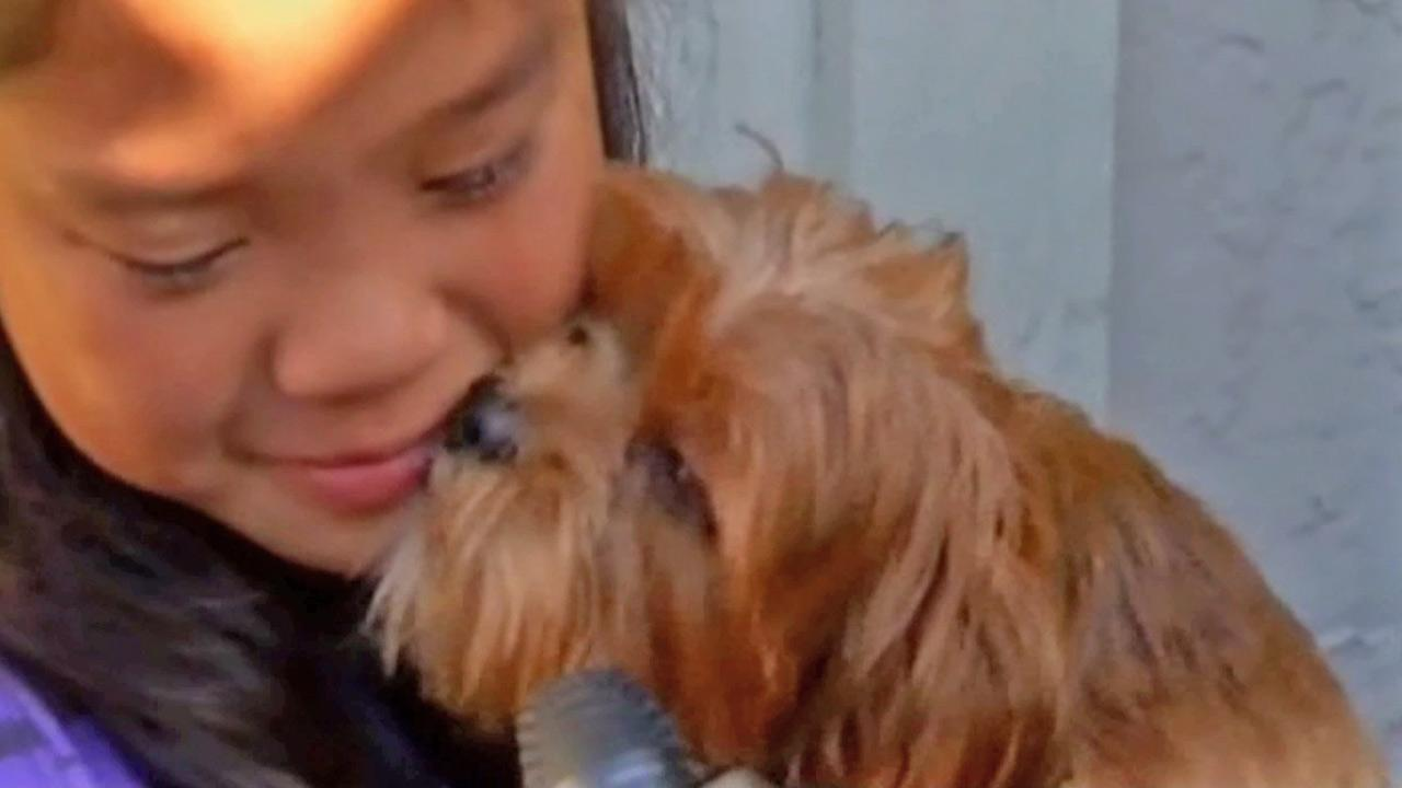 Marissa Mabanag, 10, was filled with joy after being reunited with her 5-month old puppy Meeko Thursday, Oct. 4, 2012.